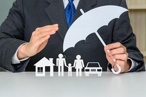 Asset Protection Concept